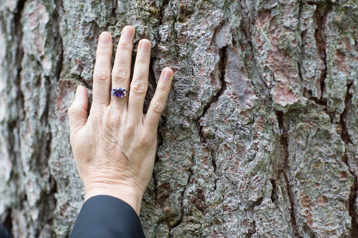 Bäume bringen tiefe Naturverbindung und sind starke Anker.